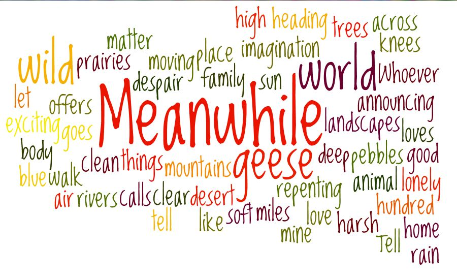 Word art courtesy of Wordle.net