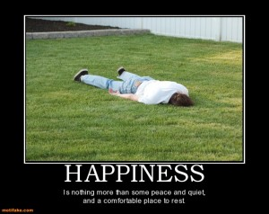 happiness-this-spot-looks-perfect-demotivational-posters-1346072278