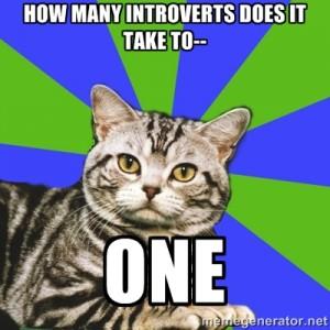 Introvert Cat Strikes Again!